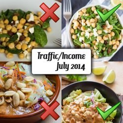 July 2014 traffic and income report | hurrythefoodup.com