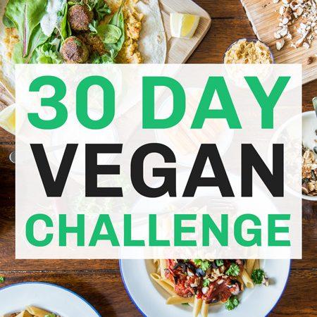Vegan Challenge Product Image