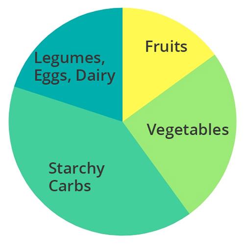 Pie Chart Vegetarian Macros