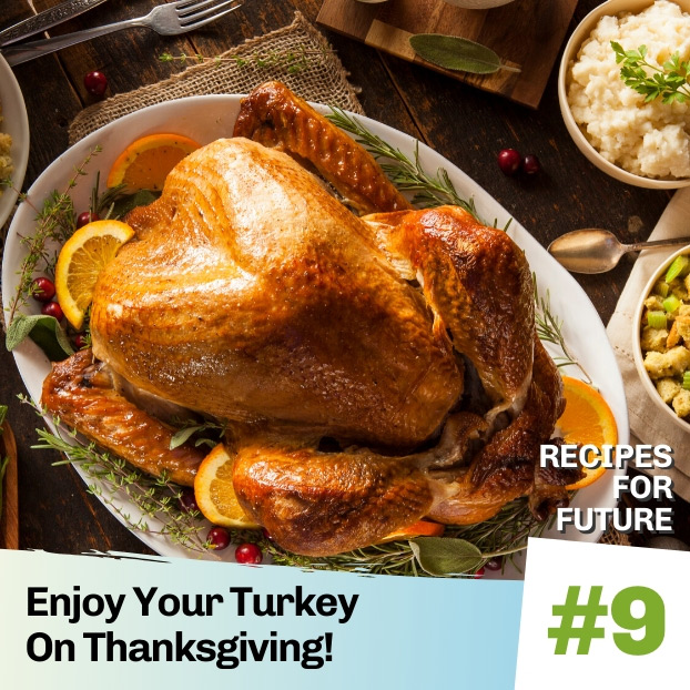 enjoy your turkey on thanksgiving - recipes for future 9