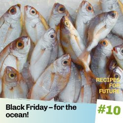 Recipes for future 10 – Black Friday for the Oceans