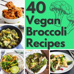 40 Vegan Broccoli Recipes – Plant-based plants | Hurry The Food Up